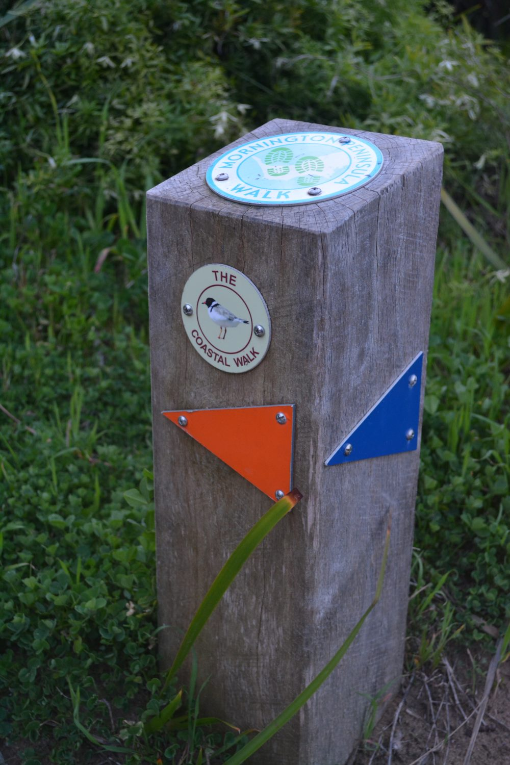 Directions for the Coastal Walk