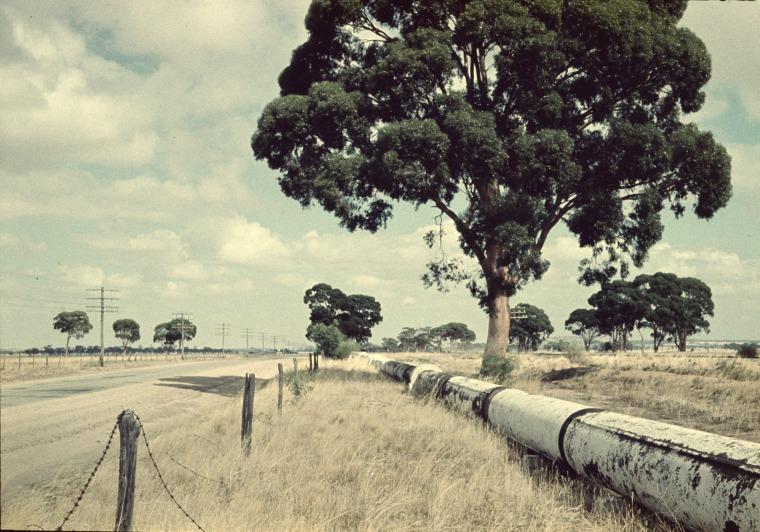 The Goldfields Pipeline near Kellerberrin, 1961