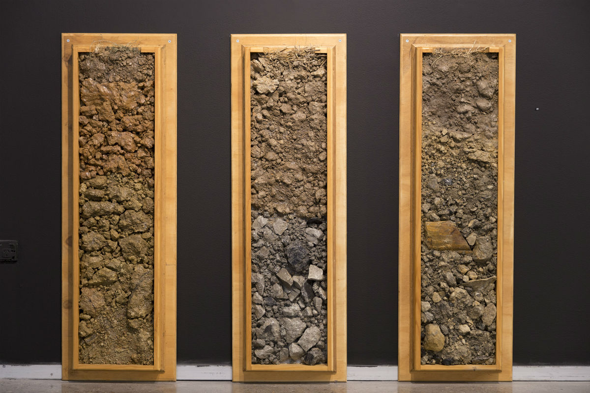 The three soils profiles show one pre-mining soil and two post mining, reconstructed soils from a single mine in the lower Hunter Valley.