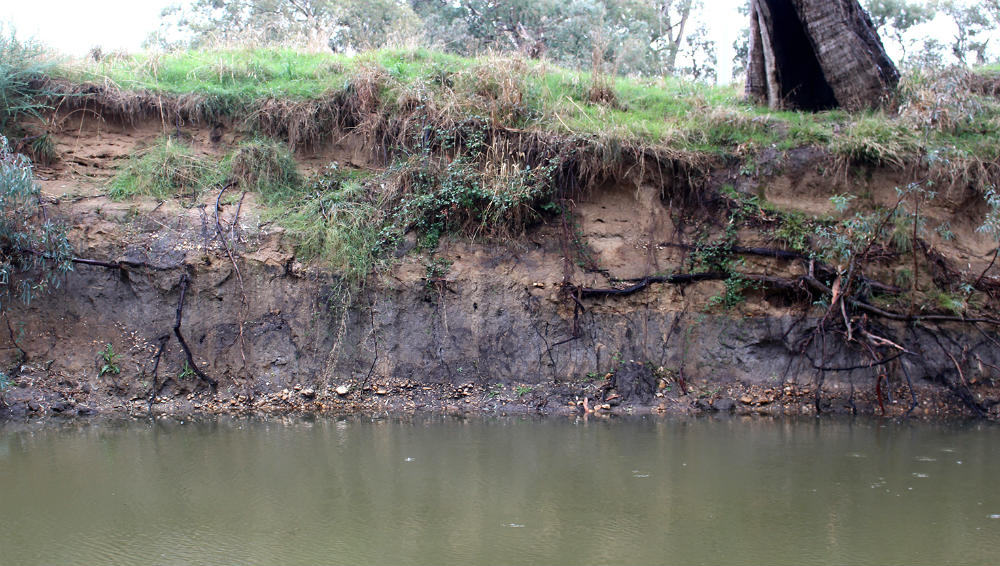 The dark layers of the original floodplain contrast with the lighter gravel and sand washed down the river after mining