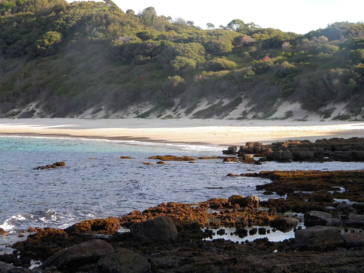 Fishermans Bay, where Michael beachcombs for washed-up objects