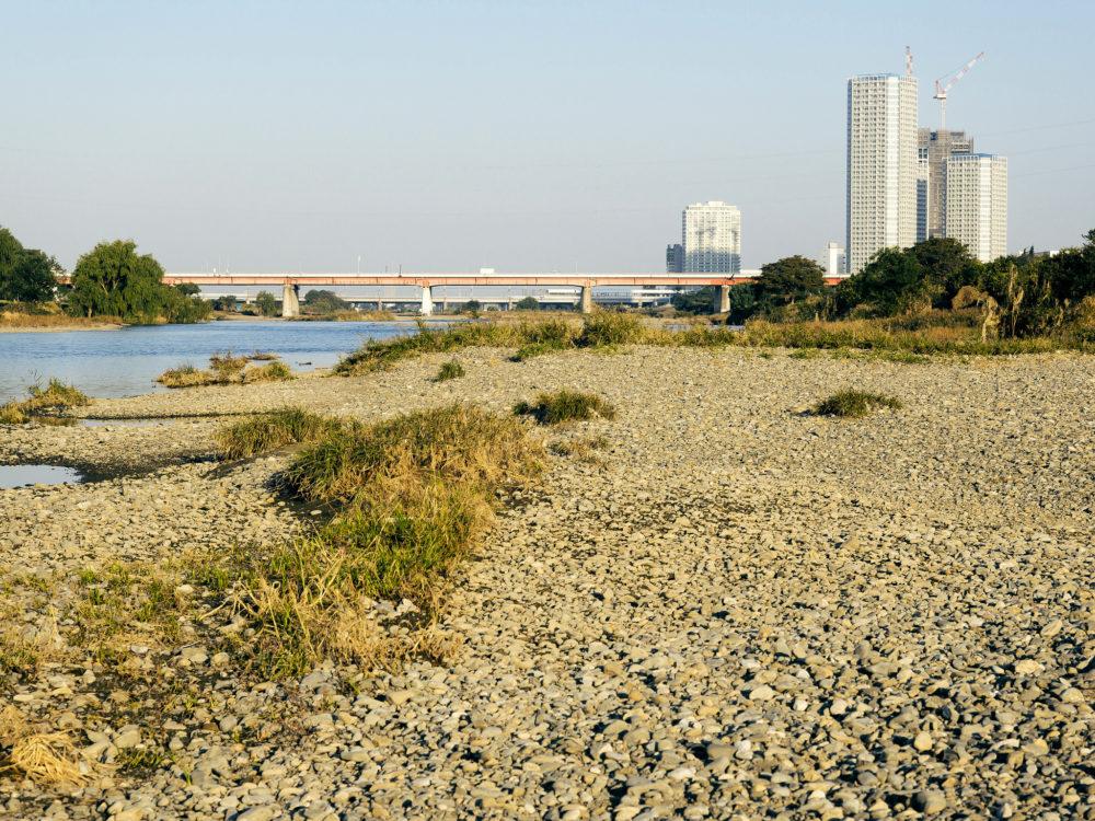 Tama River, Tokyo